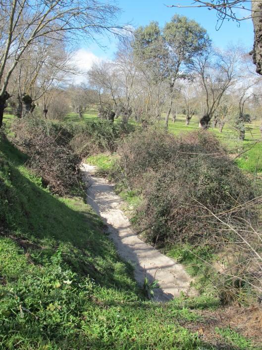 Arroyo de la Fresneda