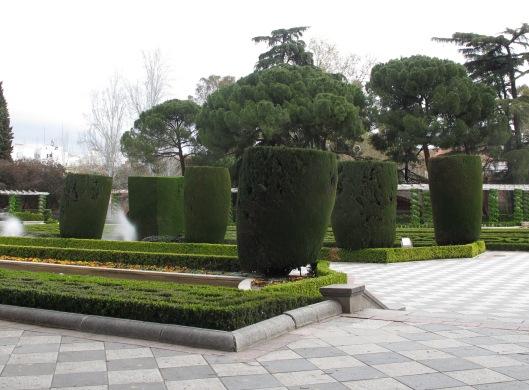 Cipreses de Monterrey de los jardines de Cecilio Rodríguez (Parque del Retiro)